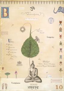 Bohdi with Buddah