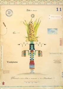 Corn with Corn Maiden