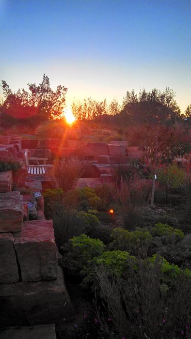 Sunset In The Garden Concert Series Santa Fe Botanical Garden