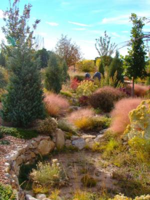 Visit Santa Fe Botanical Garden